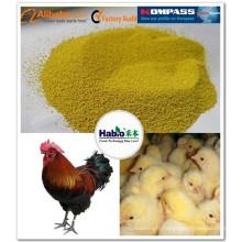 Enzyme composée pour l'alimentation de volaille (broilier, couche d'oeuf, canard)