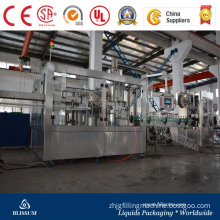 Full-Automatic Complete Automatic Gas Drink Filling Line/Machine/Equipment