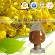Weeping Forsythia Capsule Extract