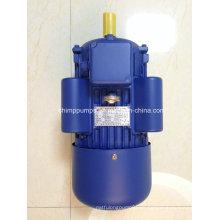 Motor del motor eléctrico de la CA de la serie de Yl del compresor para el compresor de aire