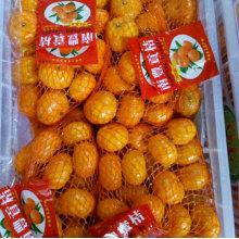2016 neue Ernte Nanfeng kleine süße Baby Mandarine
