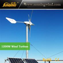 Système de pompage hybride solaire de vent (système de MAX 1200W)