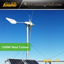 Wind Solar Hybrid Pumping System (MAX 1200W System)