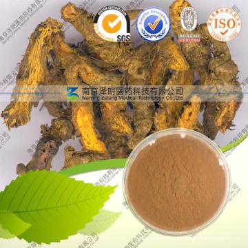 Hochwertiger 100% natürlicher Chelidonium Majus Extrakt - Coptisine