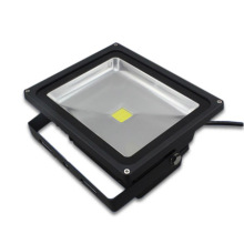 ES-30W LED Flood Light Bulbs
