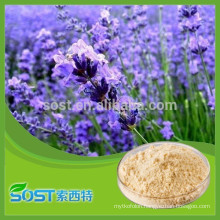Best selling and high quality carnosic acid with competitive price