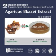 Natural Agaricus blazei extract powder