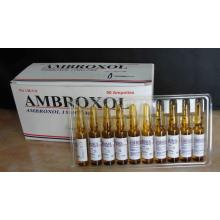 Customized for Ambroxol Medicine Ambroxol Injection I.M./I.V. 15MG/2ML supply to France Metropolitan Suppliers