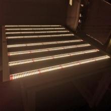 La carte Quantum la plus chaude LM301B à spectre complet 640W