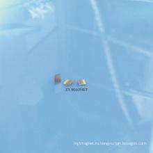 Высокое качество небольшой дуги Неодимия ndfeb постоянный Магнит с ts16949