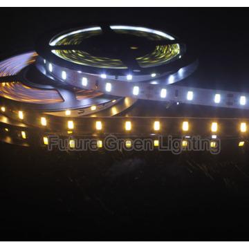 CE approuvé Blanc Cool et Blanc chaud 5630 Bande LED flexible avec garantie de 1 an