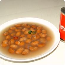Todos os tipos de legumes conservados feijões salgados em salmoura