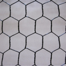 Mesh Wire Ayam Twisted Hexagonal