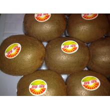 Fruta fresca jugosa de kiwi grande