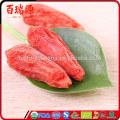 Zero pesticide goji berry goji berries dry goji berry with from ningxia