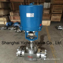 Electric High Pressure and Hightemperature Steam Control Valve