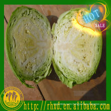 chinese fresh cabbage market price