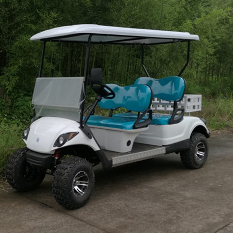 2 person gas powered golf utility cart