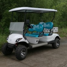 Leading for 2 Seats Electric Utility Vehicle Gas utility golf cart, off road purpose export to Liberia Manufacturers