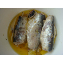 Sardines en étain avec haute qualité