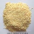 Granulé déshydraté de granule d'ail d'usine