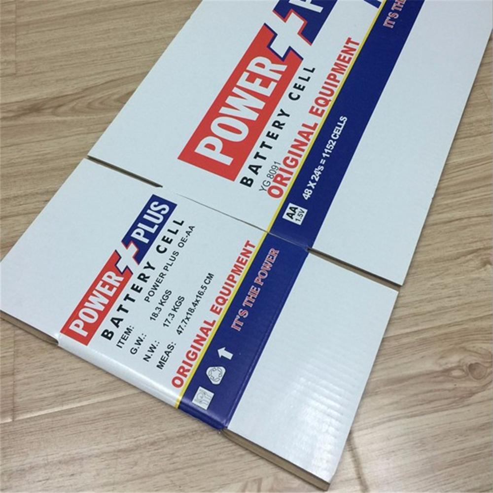 Watermarking Carton5