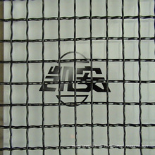 Black Molybdän Mesh 40 Mesh / 60 Mesh / 100 Mesh im Laden ----- 30 Jahre Fabrik