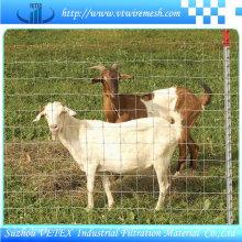 Heat-Resisting Grassland Wire Mesh for Animals