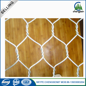 1/4 inci Galvanized Hexagonal Chicken Wire Mesh