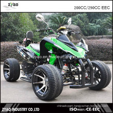 Japanese Quad Bike EEC ATV Bike