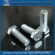 Ts Manufacturer Galvanized Bsw Hex Bolt