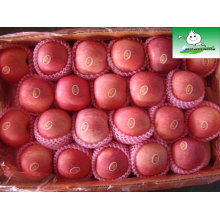 Шаньдун fuji яблоко, цены на фруктовый рынок apple