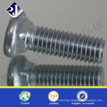 Carriage Bolt with Flat Head
