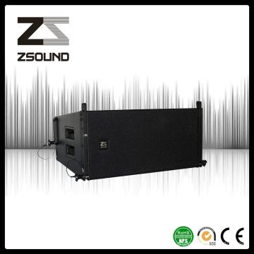 """Haut-parleur de rangée de ligne simple de 10 """", Amazing Power PRO Audio"""
