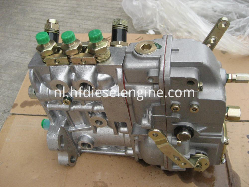 Injection Fuel Pump for DEUTZ F3L912 (5)