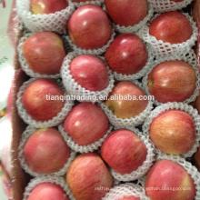 Chine pomme Qinguan d'origine Shannxi
