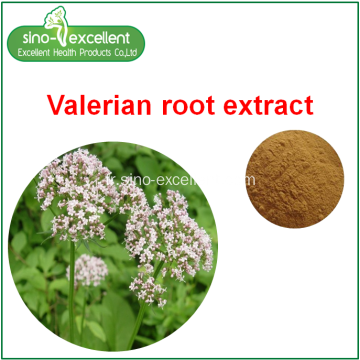 Valeriana officinalis L.extract en poudre