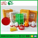 Professional automatic poultry drinkers, large quail drinker, plastic poultry drinker