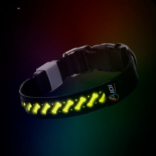 Hot Sale Blinkande Glödande Led Light Dog Collar