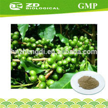 Nutritional Supplement green coffee bean extract capsules 50% chlorogenic acid