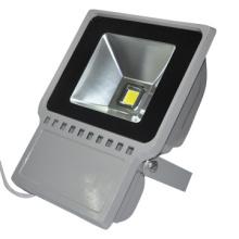 60W 12V LED Landscape Light