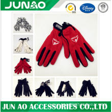 embroidered polar fleece glove