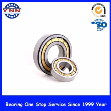Cheap and Stable Performance Cylindrical Roller Bearings (NJ 321)