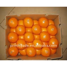 Chinese fresh Navel orange packed in 15kg carton
