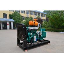 30KW Natural Gas Generator