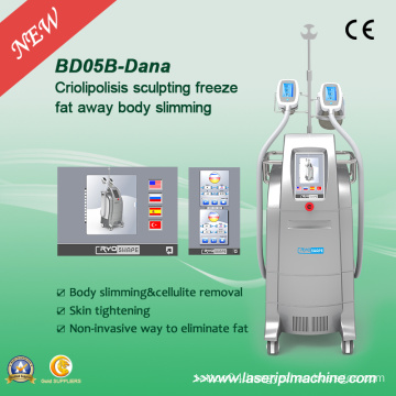 Coolshape Cryolipolysis Freeze Fat Cell Slimming Machine with 2 Handle Bd05b