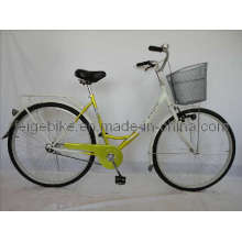 Rear Coaster Brake Classic Bike City Bicycle (FP-TRDB-S040)