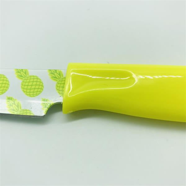 ceramic coating paring knife