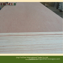 Cheapest Price Good Quality Bintangor Plywood for Decoration