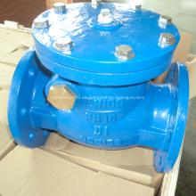 Válvula de retención oscilante de asiento de metal BS5153